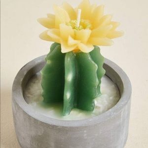 Twos company yellow cactus candle in pot